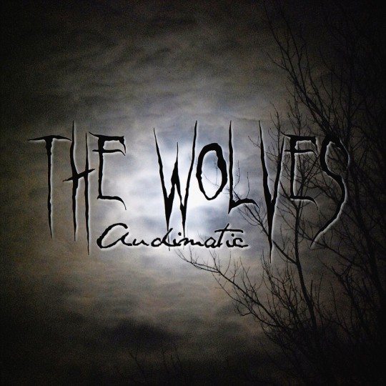 TheWolvesCover 540x540 Audimatic   The Wolves